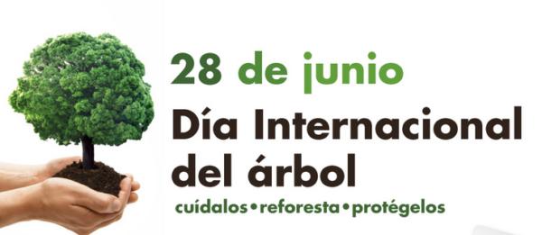 Día mundial del Árbol 28 de junio