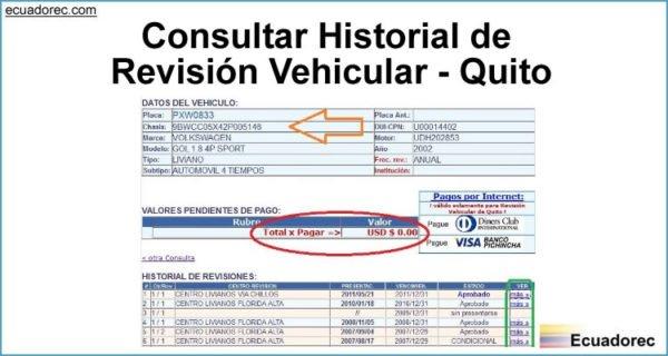 CONSULTA HISTORIAL REVISIONES DE VEHÍCULOS