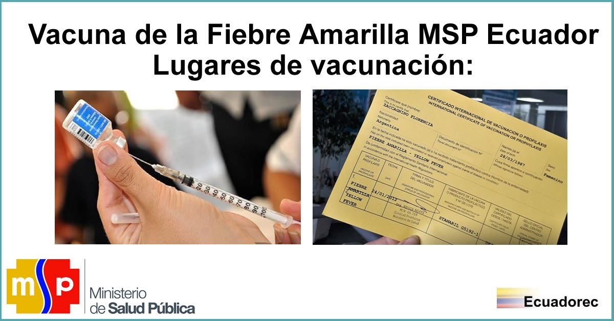 La imagen tiene un atributo ALT vacío; su nombre de archivo es vacuna-fiebre-amarilla-msp.jpg